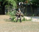 szkoła kiszewo (60)