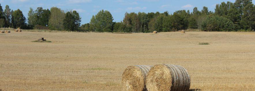 Zaproszenie na forum rolniczo-