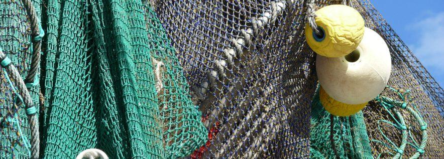 Wiersze, żaki, i mieroże, czyli o tradycyjnym łowieniu ryb